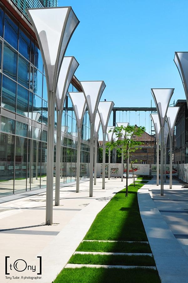 City Business Centre garden